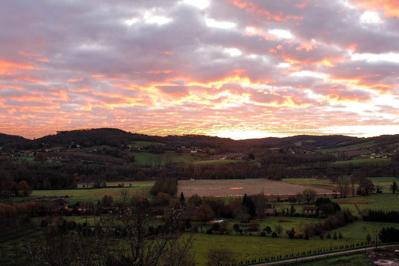 Coliarte | Ein glücklicher Morgen